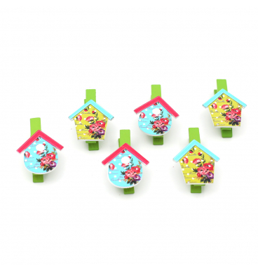 Assorted colourful bird house pegs