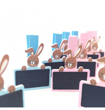 Blue and pink blackboard bunny pegs