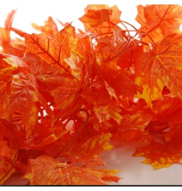 Orange autumn ivy