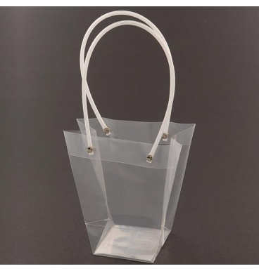 Transparent bag with handles